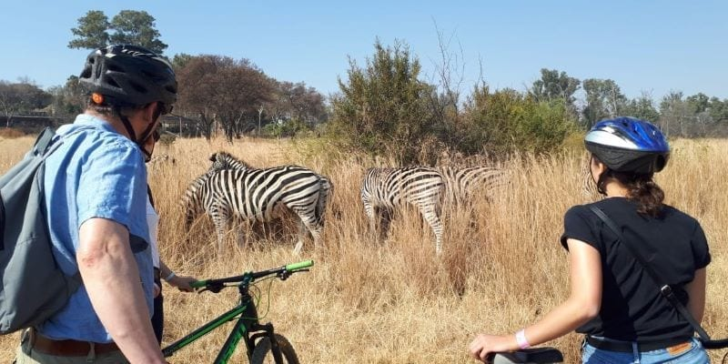 You believe in ecotourism with Tales from Africa Travel. real sustainable tourism in Africa.