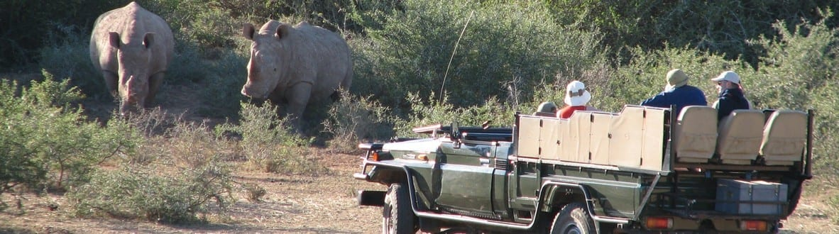 e-book Tales from Africa Travel southern Africa What you need to know before choosing a safari 1